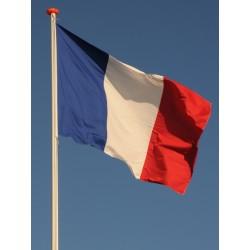 Vlaggen Frankrijk (3)