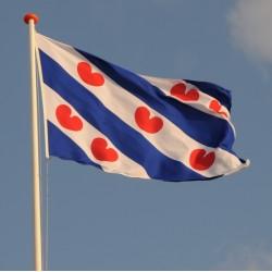 Provincie vlag Friesland Aanbieding